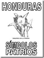 simbolos patrios honduras 3 jugarycolorear