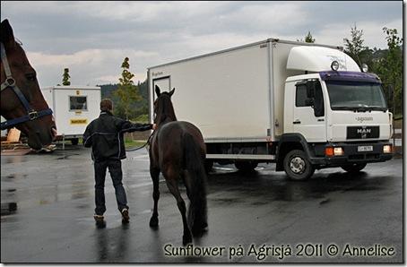 2011-agrisjaa_01
