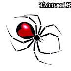 spiders-15.jpg