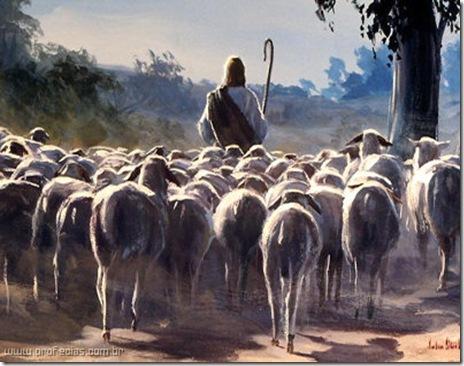 jesus_o_pastor_com_as_ovelhas