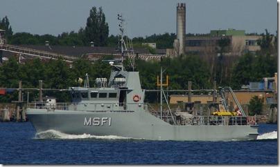 MSF1_002