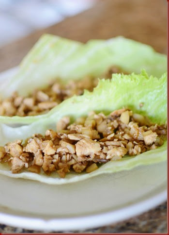 I was craving lettuce wraps the other day and immediately remembered about after I had Re Asian Lettuce Wraps