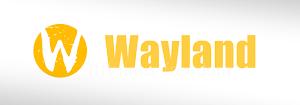 Wayland 1.2