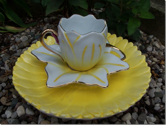 yellow teacup 004