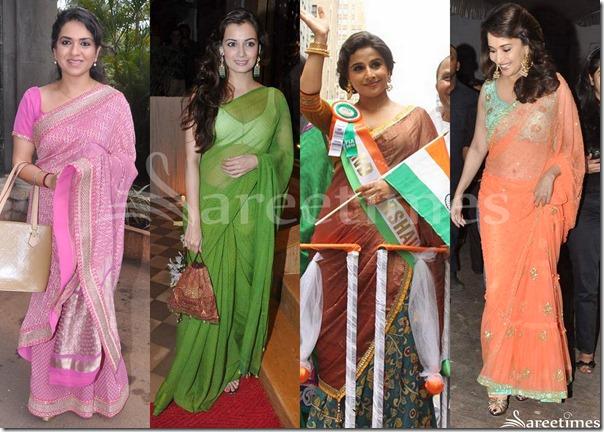 Bollywood_Sarees_2013(8)