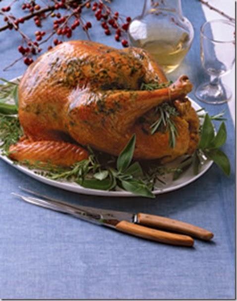 ba_1107_turkey_l