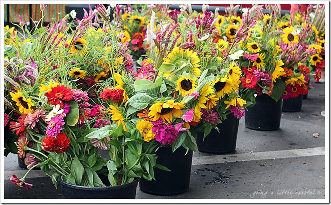 flowers_edited-1