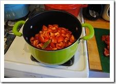 tomato paste 2011-08-16 002