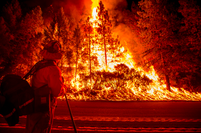 The 'King Fire' in Northern California burned more than 97,000 acres of land in El Dorado County, California, from mid-September to mid-October 2014. Photo: Reuters