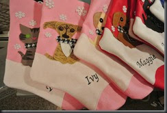 Crazy dog stockings!