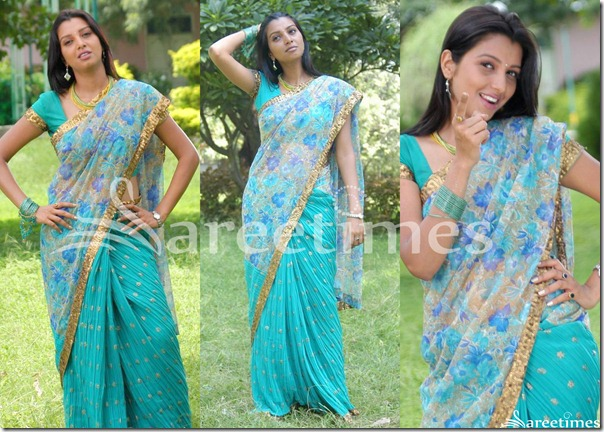 Manjulika_Blue_Printed_Half_and_Half_Saree