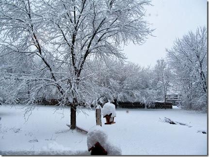 snow12-14-13e