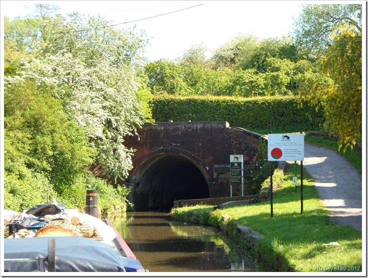 SAM_0330 PB Tunnel