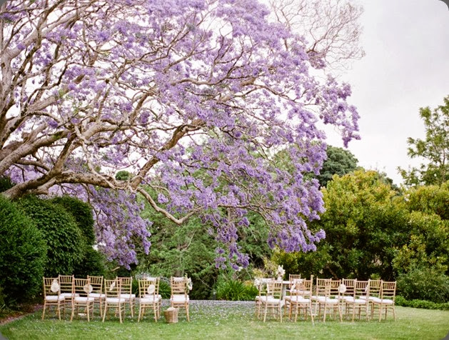 intimate ceremony site 541442_10151552772768336_1183476516_n Jodi McDonald Photography and imbue weddings