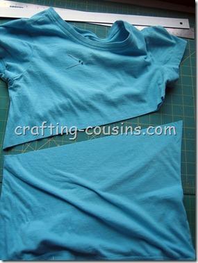 Britta Shirt (8)