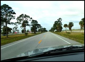 02 - Heading toward Lake Okechobee - Horse and Cattle Country