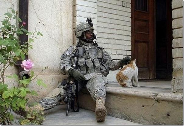 Soldados e animais de estimação (9)