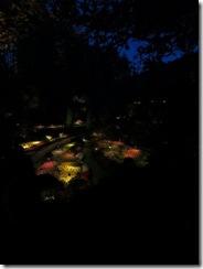 Butchart Gardens 93