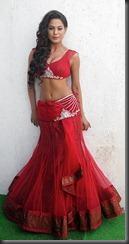 Veena-Malik-New-Hottest