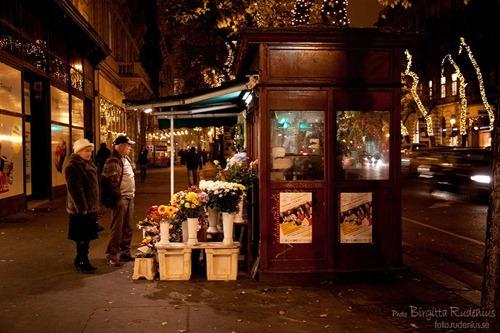 street_20111125_flowershop