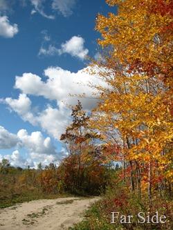 Near the Hanna Ore Trail Sept 29
