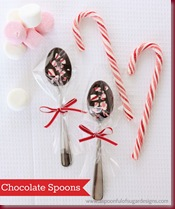 Chocolate Spoons    12_jpg