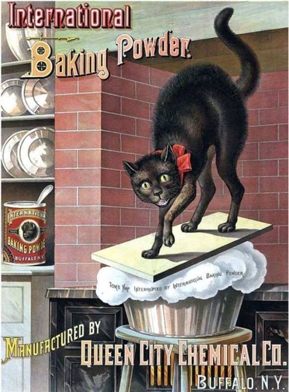 Vintage-Cat-Advertisements-01