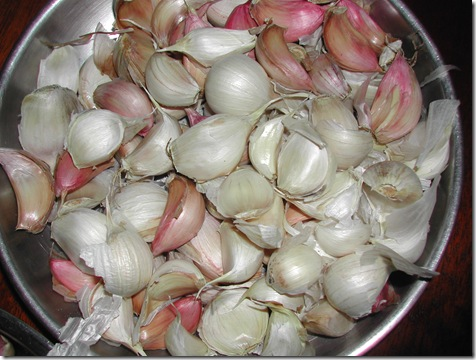 Garlic ready for planting