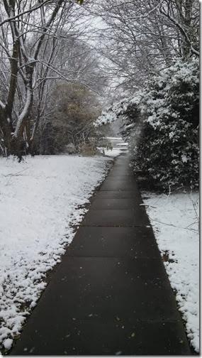 Snow 02 (3)