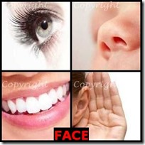 FACE- 4 Pics 1 Word Answers 3 Letters
