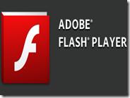 Come risolvere il problema Adobe Flash Player ha smesso di funzionare
