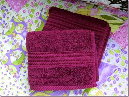 TowelsIMG_2503