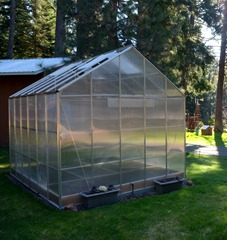 the greenhouse is ready and waiting for a new crop