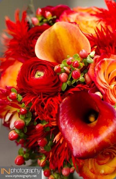 0360w-090311crowell bella fiori