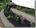 garden.jpgrden  8-30