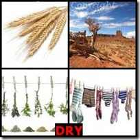 DRY- 4 Pics 1 Word Answers 3 Letters
