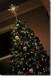 Christmas 039