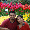 Tulip gardens 773.JPG