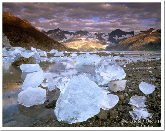 USA, Alaska, Glacier Bay NP, Stranded icebergs at low tide in front of the Lamplugh Glacier with sunrise clouds over the mountains of Johns Hopkins Inlet