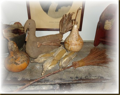Gourds Broom Turkey 2