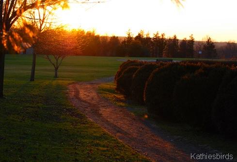 9. sunset