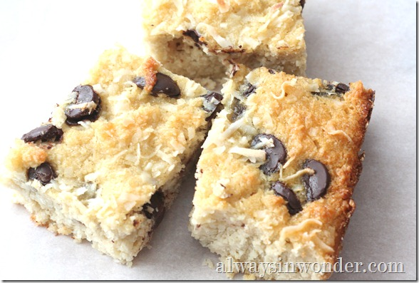 grain_free_coconut_bars (34)