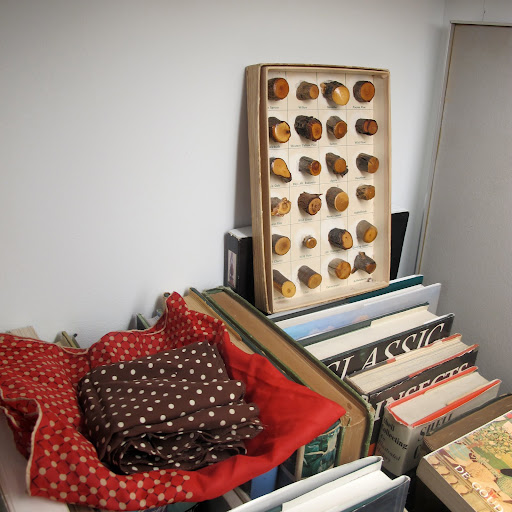 The box in the corner is a collector's item–filled with different types of wood. Students would receive these boxes to demonstrate the differences among things found in nature, such as wood or sea shells.
