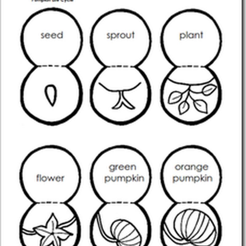 Preschool Alphabet: All of our ABC Themes!