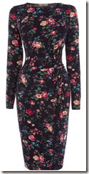 Oasis Rose Garden Wrap Dress