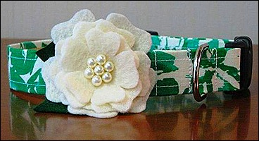 Green and white flower collar
