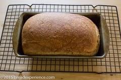 1805-potato-bread-8