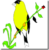 Goldfinch_1