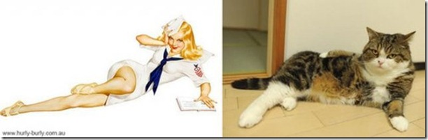 cats-pinup-models-27