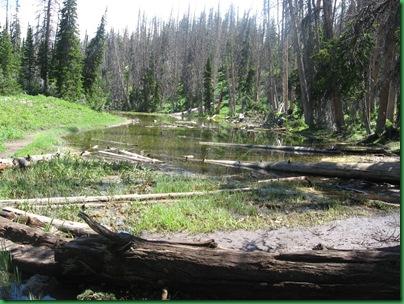 Alpine Pond 034